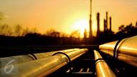 Ekspansi Industri Petrokimia Dongkrak Penyerapan Produksi Gas